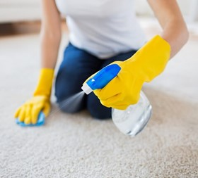 Photograph of High Profile cleaning services firm employing over 1300